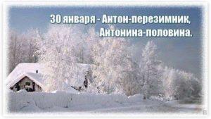 Антон Перезимник